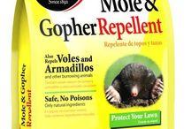 Garden - Pest Control