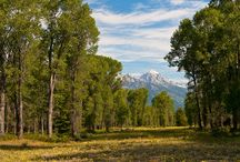 Spectacular 70+ Acre Offering on the Snake River / A rare opportunity to own more than 70 acres in Jackson Hole, Wyoming with Snake River frontage and stunning mountain views in every direction.