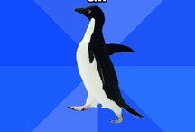 socially awkward penguin / by Kimmy Lynne