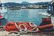Casa vacanze villa Don Michele Ogliastro Cilento / Villa di 300 mq da cui si gode una fantastica vista sul Golfo di Salerno, la Costiera Amalfitana e l'isola di Capri. Si trova su una collina a 360 mt. sul livello del mare distante 300 metri dal paese di Ogliastro Cilento. Per le sue caratteristiche è ideale per un soggiorno riposante e tranquillo ma con la possibilità di piacevoli escursioni. La villa può ospitare comodamente 8/10 persone ed ha ampi spazi sia interni che esterni