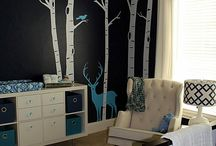 Cade's Room / Inspiration for Cade's nursery!