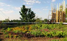 Green Infrastructure and Businesses / Businesses using Green Infrastructure