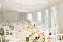 Wedding Colour- Peach / Essentially a a pale 'pinky' orange, peach has had a recent revival, now popular and contemporary, peach can be perfectly matched with an abundance of colours, particularly gold, silvers and eucalyptus green for a sophisticated and chic colour palette.