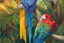 Fauna tropical