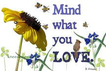 Mind What You Love... / Friday EFA Treasury, 4/26/13