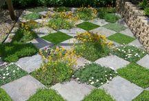 Garden revamp idea