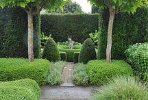 HER lime/terrace border
