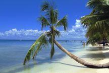 Islands I've Visited / by Susan Hubley-Hawke