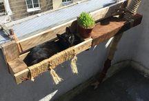 DiY / Do it yourself. Cat shelve design :)