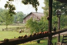 Country Living / by Deana Slone