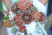Weddings / by Holly Morris