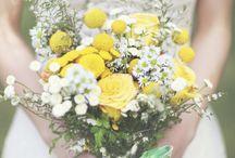 Wedding Blooms / Harriet's ideas for bouquet etc