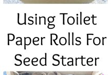 Toilet paper & Seeds