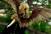 Wings / How to make different types of wings. Also included here, feather tutorials.