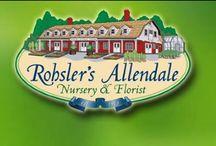 Rohsler's Allendale Nursery / A Tour Around Our Nursery