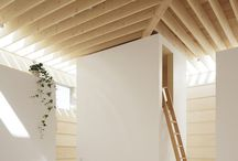 Elements - Ceilings / by John Lancaster / Architect
