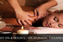 Ayurvedic Treatment Karnataka / Wild Woods Spa and Resort is leading resorts in Coastal Karnataka nestled in the midst of nature for a relaxed & fun-filled vacation.