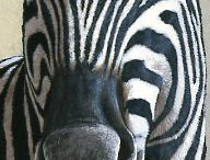 Zebras in art