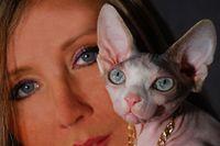 De'TrojanS Catery Sphynx , Bambino ,Elf (Polish) Cats / www.facebook.com/DeTrojanS  UWAGA!!! Mamy Kocięta!  We have kittens !!! Parduodami sfinksu veisles kaciukai   * www.facebook.com/DeTrojanS  w razie pytań proszę dzwonić i/lub pisać (tel. najlepiej po 11.00-23). +48601204073