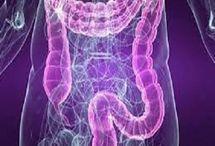 Darm-Pds-Crohn-Sibo