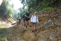 Jungle trekking in Khao Sok / Jungle trekking tours in Khao Sok National Park by Paddle Asia from Phuket, Thailand