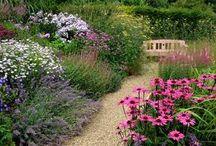 garden walkways / by Tracey Daniels