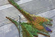 organikus építészet