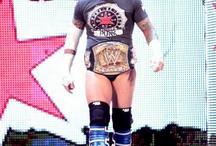 WWE Punk E AJ