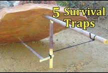 trappole