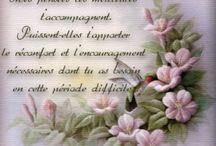 mots encouragements