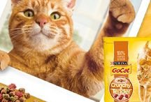 Pet Products and Freebies