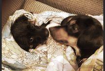 Frio / Naty & Luna