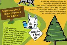 doggie adventure / puppy playtime *woof*