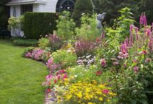 english flower and butterfly gardens