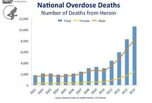 Heroin & Rx Painkillers. A Problem. / deaths from drug overdoses, legally prescribed narcotics; illegal pain killers