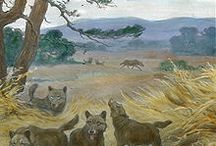 Anthropology Mega Fauna / by Kaye George