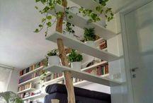 Drewno Drzewo