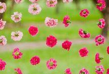 Inspiration: Blush Pink / by Vera Bradley