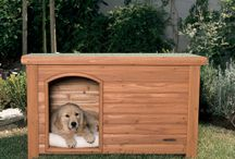 new house for pups / by Winnie Hill