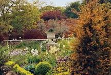 EXQUISITE.GARDENS / by Kate Smith
