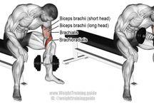 Workouts ¤ Wrist