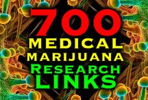 Science & Research of Cannabis