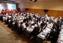 Elecciones RFEA 2016 / Informaciones relativas a las elecciones de la RFEA 2016.
