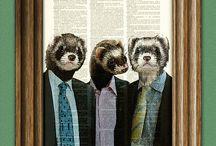 Ferrets!!! +5  / by Allie Johnson