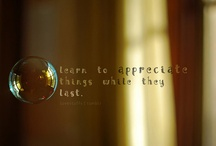 Love this! / by Juanita McCue