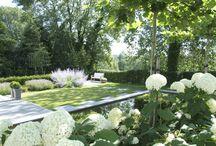 Inspirational Gardens!