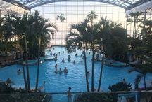 The new Therme from Bucharest / Great location for leasure time, anytime.