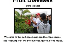 Online Courses in Plant Diseases