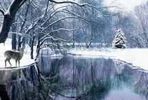 Winter-tél