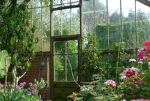Greenhouses and conservatories  / I love gardening and greenhouses. There is something great about the smell of plants growing.  / by Lisa Elifritz